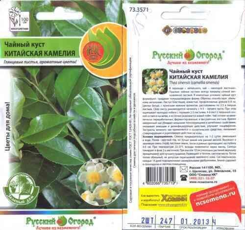 Семена чаи цена